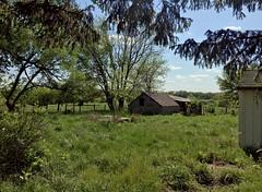 Old Famhouse (cowyeow) Tags: missouri american america usa nature green habitat landscape farm farmhouse composition rural
