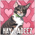 'Hay Ladeez' featuring Alfie thumbnail