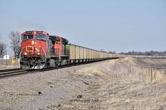 Canadian invasion on the BNSF. (Machme92) Tags: cn canadian nikon nikond7200 railroad railfanning railroads railfans cbq burligrton route bn bnsf american coal coalcars