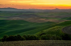 Palouse Dawn (Cole Chase Photography) Tags: palouse rollinghills sunrise washington pacificnorthwest