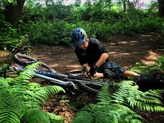 Trailside Repair (Gee & Kay Webb) Tags: mtb mountainbike cycling riding outdoor adventure trails trees bike bicycle giant trance helmet tools repair trailsiderepair ferns manatwork