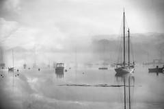 Visitors are here... (jm atkinson) Tags: 7dwf blackandwhite schooner boats harbor pemaquidharbor maine fog ocean monochromebokehthursday