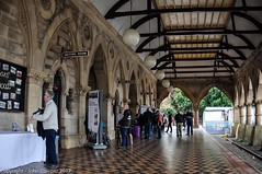 Transport Heritage Expo 2017 - -16 (john cowper) Tags: transportheritagensw centralrailwaystation transportheritageexpo heritagediesels nswrailmuseum 3642 3041 4001 mortuarystation entertainment queensbirthdayweekend sydney newsouthwales