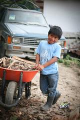Boy with Chopped Wood (mayanfamilies) Tags: guatemala mayanfamilies tierralinda vitaminangels children distribution malnutrition vitamins wellness fundaciónfamiliamaya mayan families charity donate canon eos 5d
