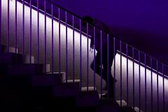 Illuminated Stairs (CoolMcFlash) Tags: perso man person stairs illuminated night light walking canon eos 60d vienna architecture steps mann stufen treppen beleuchtet nacht licht gehen steigen architektur fotografie photography wien tamron a007 2470 purple silhouette kontur