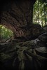Midgard (color) (Sine--Qua--Non) Tags: landscape landscapes nature outdoors statepark mccormickscreek indianastateparks indianalandscape indianalandscapes hdr hdrlandscape subtlehdr indiana wolfcave cave caves