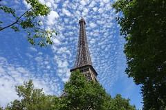 Eiffel Tower @ Paris (*_*) Tags: paris france europe city june 2017 printemps spring sunny hot sunday eiffeltower toureiffel observatory metal iron paris15 75015