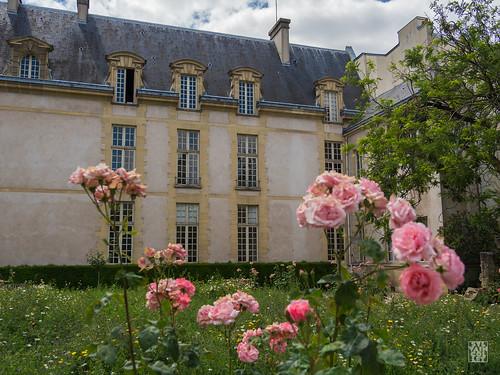 2017-06-12_6120298 © Sylvain Collet.jpg