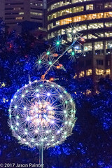 """""""SPREADING LIFE"""" (COLORLEDS: Claudio Porras (Colombia) (Japester68) Tags: night exhibition art 3star flower ball city outdoor sydney dandelion light sculpture puff blue vivid exhibit event day nsw australia aus"""