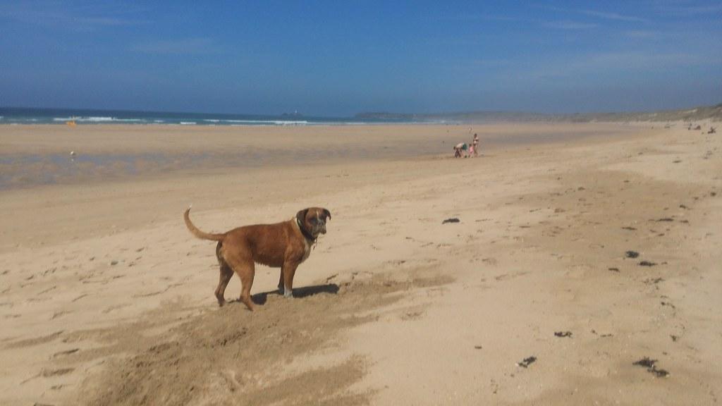 This beach is mine!