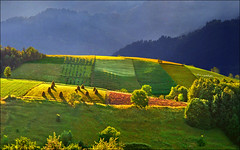 Fields (Katarina 2353) Tags: landscape serbia katarina2353 katarinastefanovic