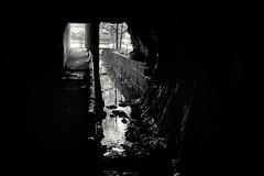 Ausgang aus der Unterwelt (Helmut Reichelt) Tags: bw sw triftsperre brücke tunnel ilzschleife ilz spiegelung hals passau frühling mai niederbayern bayern bavaria deutschland germany leica leicam typ240 captureone10 silverefexpro2 leicasummilux35mmf14asphii