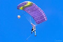 DSC_3870.jpg (Cameron Knowlton) Tags: sky diving air show oak bay 2017 nikon skydiving tea party parachuter captiaparachutevictoriabcteapartycapitalcityskydivingcanadad610air showcapital city skydivingcaptia oakbayteaparty oakbay teaparty bc canada d610 parachute victoria captiaparachutevictoriabcteapartycapitalcityskydiving