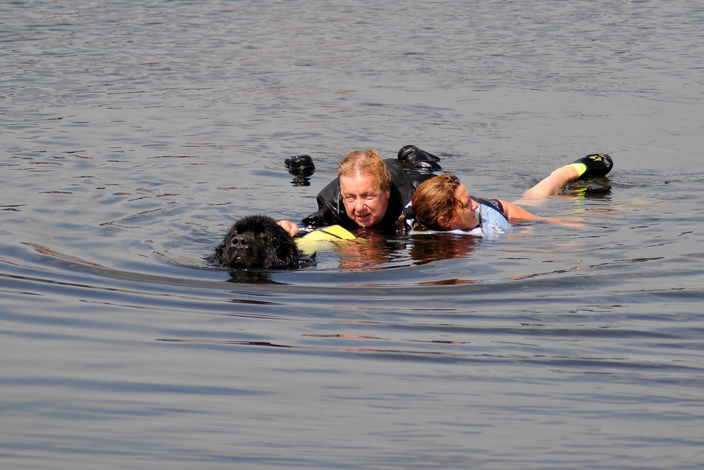 Chatham Kent Dog Rescue