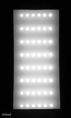 Eblouissement (sevej06) Tags: eblouissement monochrome lumière luminaire