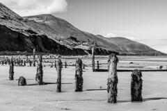 Ireland - Ring of Kerry - Rossbeigh Strand (Marcial B) Tags: marcial bernabeu bernabéu irlanda ireland anillo ring kerry beach playa rossbeigh strand