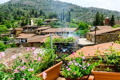 Roofs, Phikardou (George Plakides) Tags: phikardou cyprus village spring street flowers roofs vernacular traditional architecture house