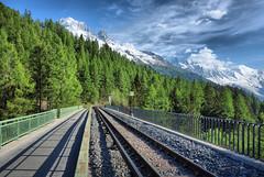 Chamonix (denismartin) Tags: montblanc chamonix alps alpes chamonixmontblanc hautesavoie france hdr spring forest tree snow glacier railway mountains aiguilledumidi argentiere