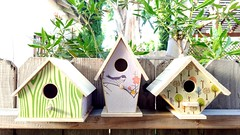 birdhouses. (boxsquare.) Tags: decoupage paper craft garden decor