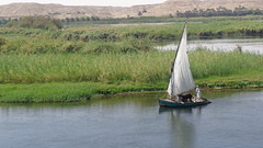 Dhow Sailboat (Rckr88) Tags: dhow sailboat dhowsailboat sail sailing ship ships boats boat nileriver upperegypt nile river upper egypt africa travel travelling water relic reflection reflections waves wave grass greenery green nature outdoors rivers riverbank thenileriver