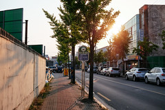 DSCF4952-5 (jryoon2) Tags: fuji fujifilm 후지 후지필름 태양 한국 korea korean coree corea photo picture photography