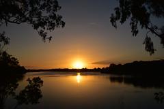 Mystic (Images by Jeff - from the sea) Tags: sunset sky sun twilight dusk water burnettriver bundaberg bluesky trees mangrovetree clouds nikon d7200 tamronsp2470mmf28divcusd gumtree landscape 1500v60f topf100 seariverpuddle crazytuesdaytheme 7dwf