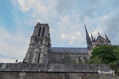 Notre Dame. (Bernandez Ber) Tags: país francia ciudadluz notredame ríolasena