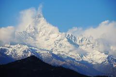 Machhapuchhre and a new coat of snow (-AX-) Tags: machhapuchhre montagnes nepal nuages pokhara sarangkot