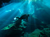 Bathed in Rays (altsaint) Tags: 714mm chacmool gf1 mexico panasonic cavern caverndiving cenote scuba underwater