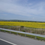 On the road in Bulgaria (126LIEBE_6665) thumbnail
