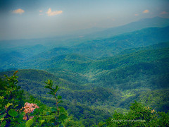 Blue Ridge Scenic (Photographybyjw) Tags: blue ridge scenic odd light this shot with clouds broken sunlight high lighting different area along parkway north carolina photographybyjw rural country trees foliage flowers
