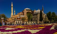Hagia sofia Pano (Turkey-Istanbul) (bryanasmar) Tags: ngc aya sofia mosque turkey istanbul sony rx1 pano hagia