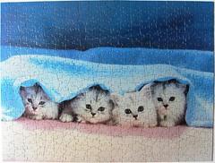 Peek-A-Boo! (Leonisha) Tags: puzzle jigsawpuzzle cat chat katze kätzchen kittens blanket decke