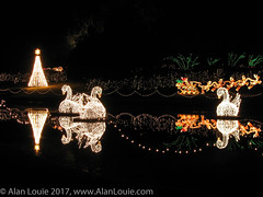 20031220 Bellingrath Xmas 0024 Swans.jpg (Alan Louie - www.alanlouie.com) Tags: bellingrath christmas alabama theodore unitedstates us