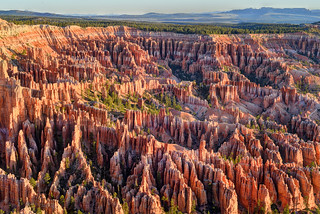Nature's Maze at Bryce Canyon!