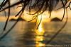 Lanikai Sunrise (j . f o o j) Tags: lanikai lanikaisunrise lanikaibeach secretislands hawaii aloha nikond610 naupaka