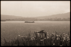 Storm with Border Sepia (Sara@Shotley) Tags: sepia rspbleightonmoss lancashire england countryside rain storm wet landscape