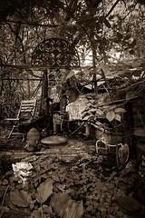 Foo Dog Garden (CarusoPhoto) Tags: john caruso carusophoto iphone 7 plus ginger blossom illinois richmond rural banal mundane everyday ordinary