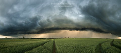 Sturm (Rainer Schund) Tags: sturm gewitter germany gewitterzelle shelfcloud böenfront arcus panorama thunderstorm stormchasing nikon natur nature natureexploring naturemasterclass nikond4 feld feldweg regen