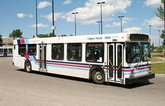 CT_7989_D40LF (Shahid Bhinder) Tags: mypictures transport transit newflyerbuses calgarytransit d40lf