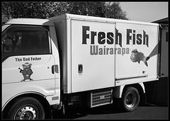 Fresh Fish (radspix) Tags: konica c35 af 38mm hexanon f28 kentmere 100 pmk pyro