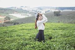 B73A0946 (duongbathong_qtkd) Tags: