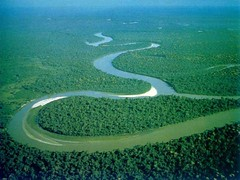 Amazon River Brazil (wanderlustsunita) Tags: amazonriverbrazil touristdestinationinbrazil holidays travel trip destination