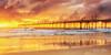 Fingal Dawn (Beth Wode Photography) Tags: sunrise dawn morning firstlight clouds sunriseclods beach reflections lowtide seagull sandpumpingjetty jetty pier fingal fingalbeach nsw goldensunrise beth wode bethwode