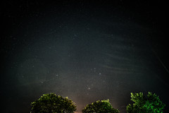 Stars (blergh.) Tags: belle river night sky ontario nikon d600 28mm trees pretty beauty photography