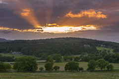 Sunset over Blakeshay Wood (John__Hull) Tags: sunset sun clouds blakeshay wood bradgate park leicestershire uk england trees stone wall dry nikon d3200 view nature crepuscular rays