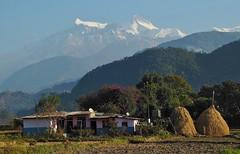 """NEPAL, Himalaya - Annapurna-Massiv  (z.T. mit Machapuchare """" Fischschwanz"""" ,  von Pokhara aus gesehen, (serie) 16185/8479 (roba66) Tags: annapurna annapurnamassiv himalaya himalayagebirge gebirge reisen travel explore voyages roba66 visit urlaub nepal asien asia südasien pokhara landschaft landscape paisaje nature natur naturalezza mountain berge range mountains montana felsen rock rocks gletscher eis ice berg"""