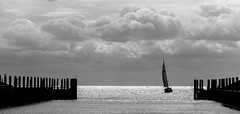 calm before the storm (tvdijk19) Tags: harbour texel netherlands harbor port haven zeilboot sailing boat ship stormy weather storm wind blackandwhite bw