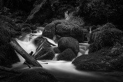 Just keep it away (blondmao) Tags: moss nature bnw switzerland kaltbrunnental forrest longexposure creek 10stopper waterfall dark valley bw water rocks blackandwhite ibach basel
