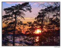 sunset in munkkiniemi (harrypwt) Tags: harrypwt helsinki munkiniemmi nature sea sunset trees reflection coastal beach paintinglike e520 1454